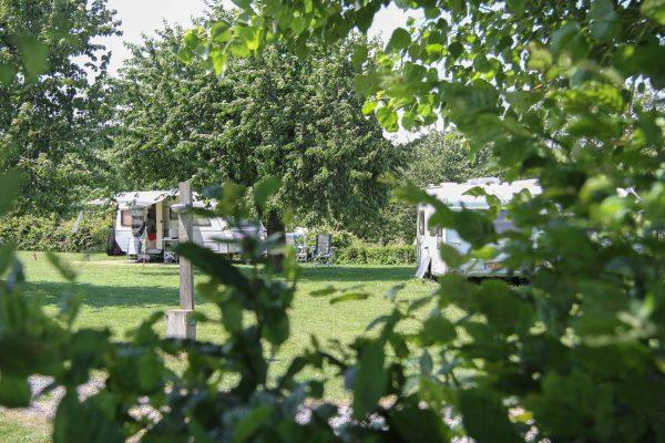 camping heuvelland